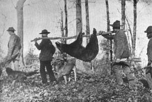 Bear-hunters-kephart-nc1